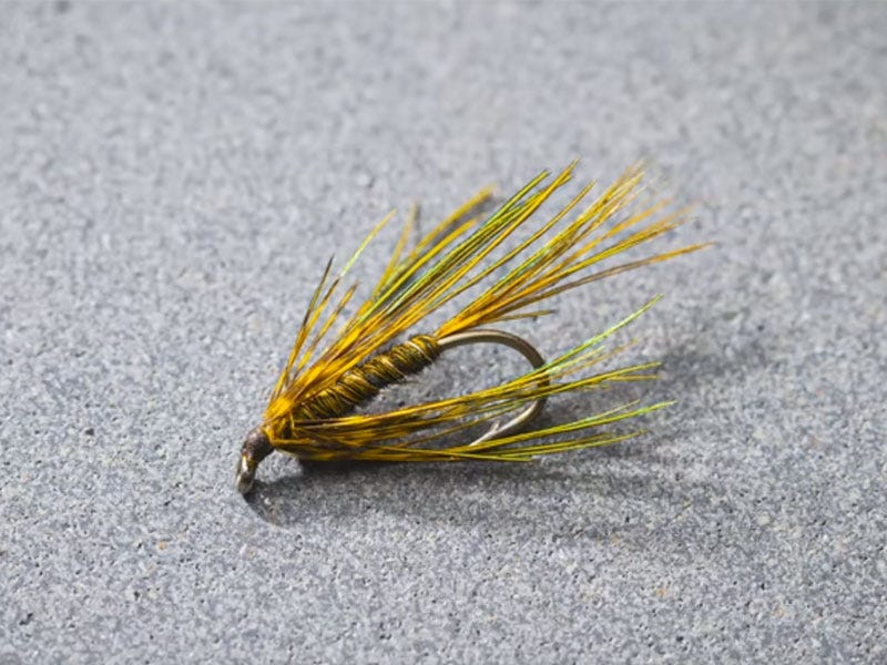 Fly Tying Friday - Six Pack Soft Hackle