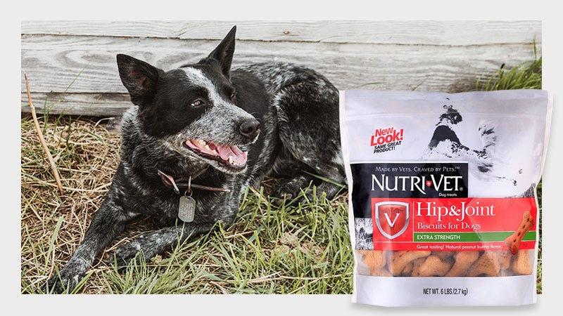 Shop NutriVet Dog Biscuit