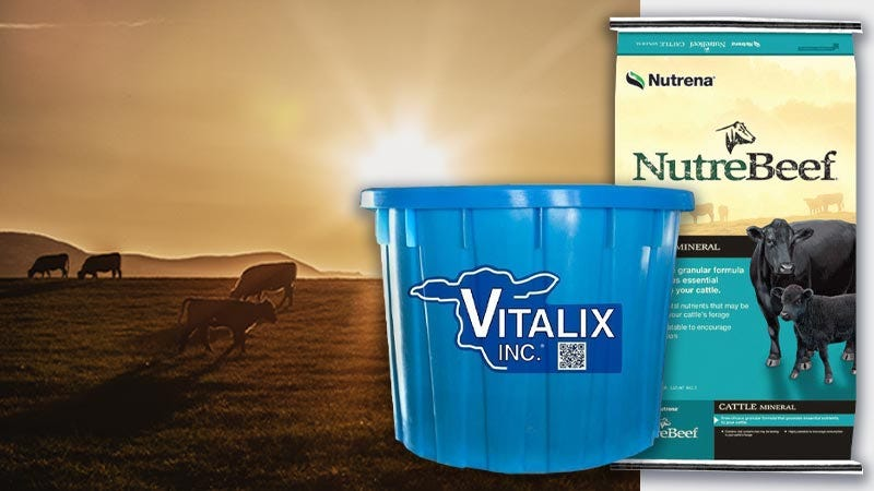 Drought Supplements for Livestock