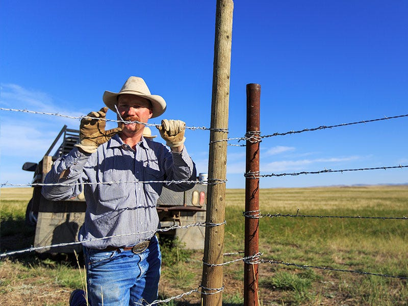 What Type of Fencing is Recommended for my Pasture, Corral, Yard?