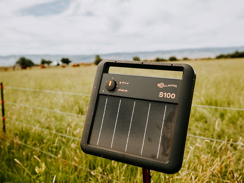 What are the Costs of Electric Fence vs. Traditional Fence?